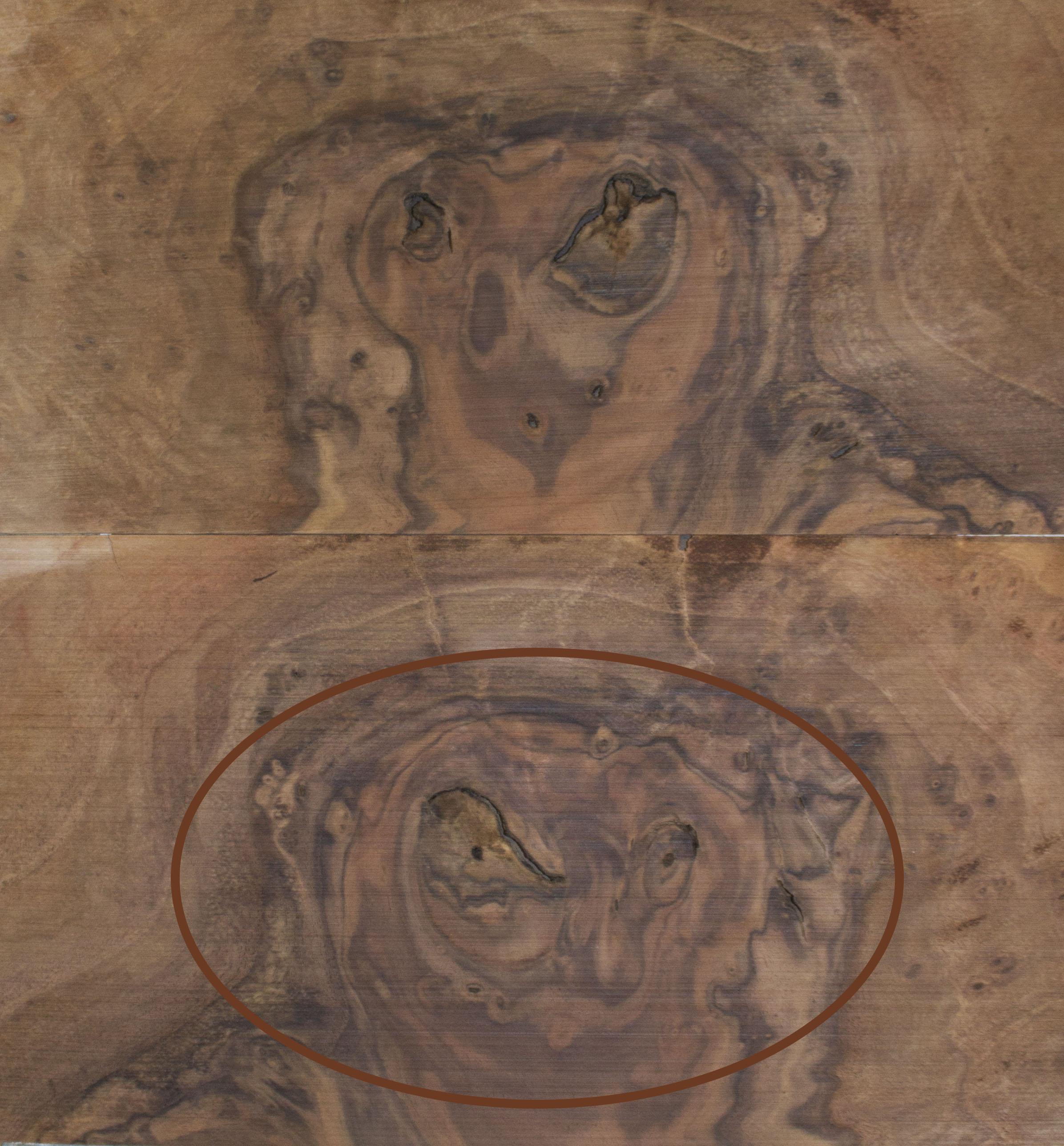 owl veneer 6.20.14.jpg