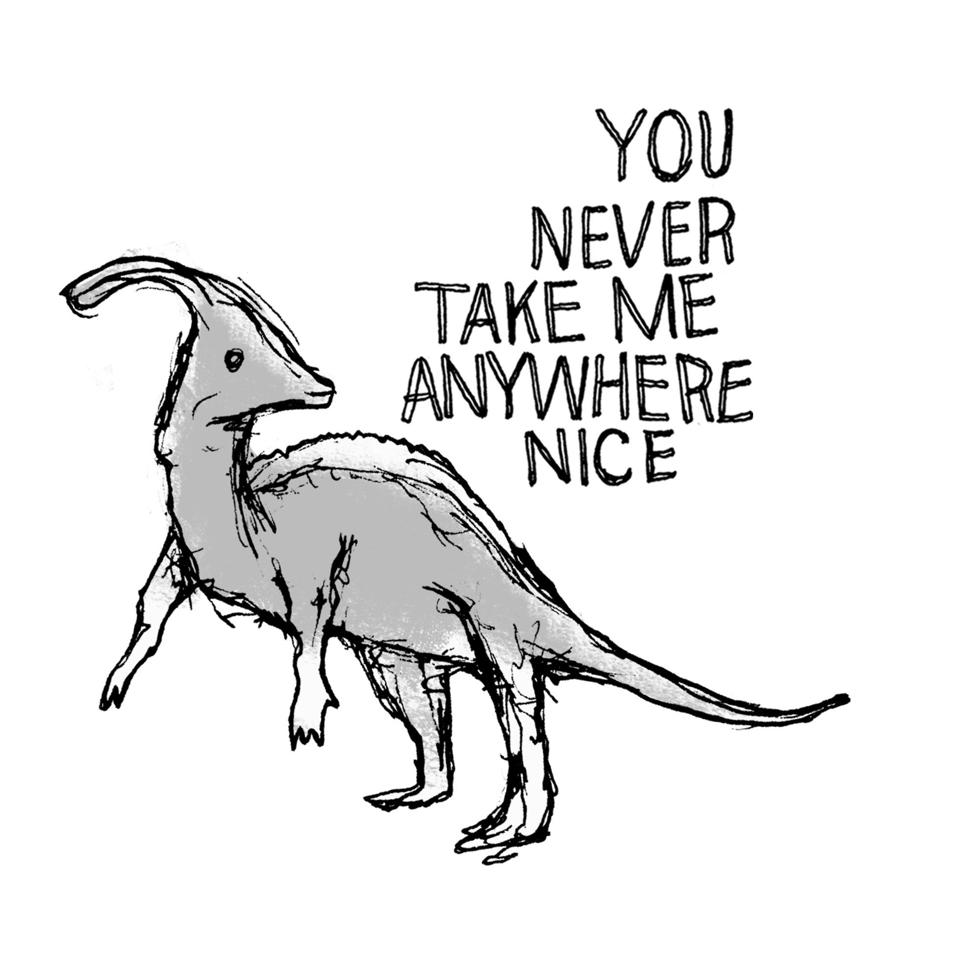 YOU-NEVER-TAKE-ME-ANYWHERE-NICE_keg_cap.jpg