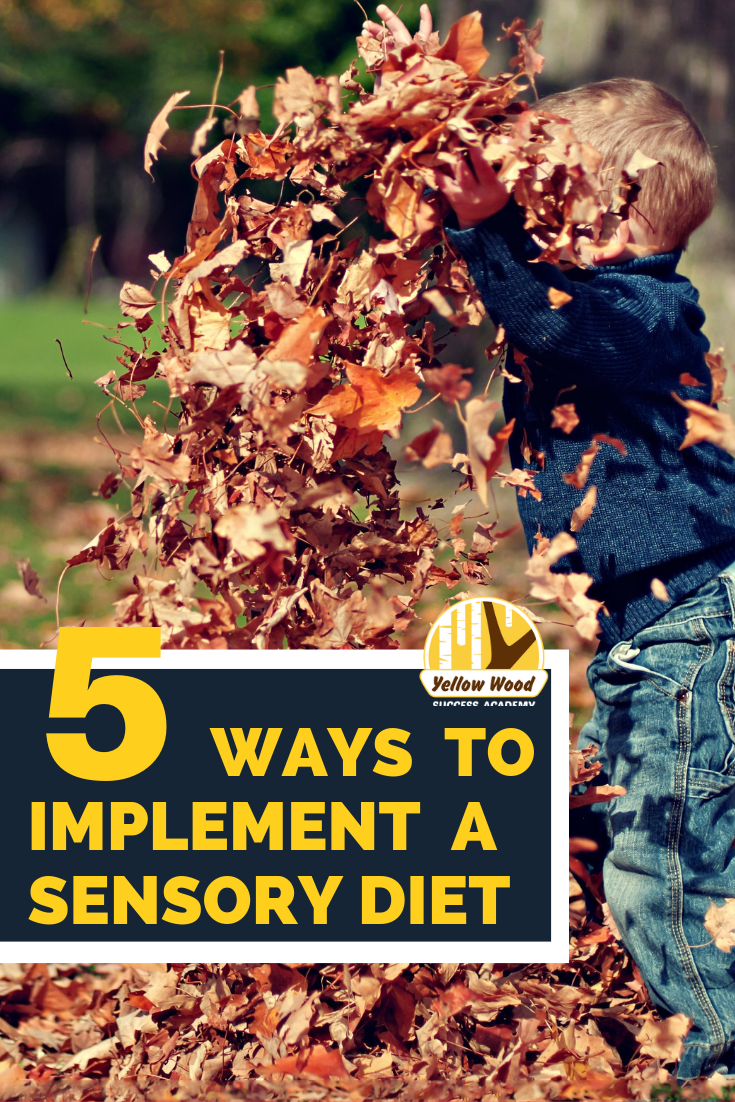 5 ways to sensory diet.png