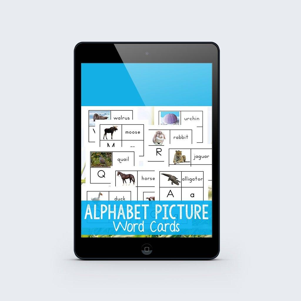 alphabet-word-cards_2048x2048.jpg