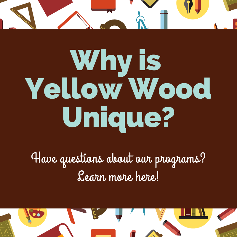 What makes Yellow Wood Unique_.png