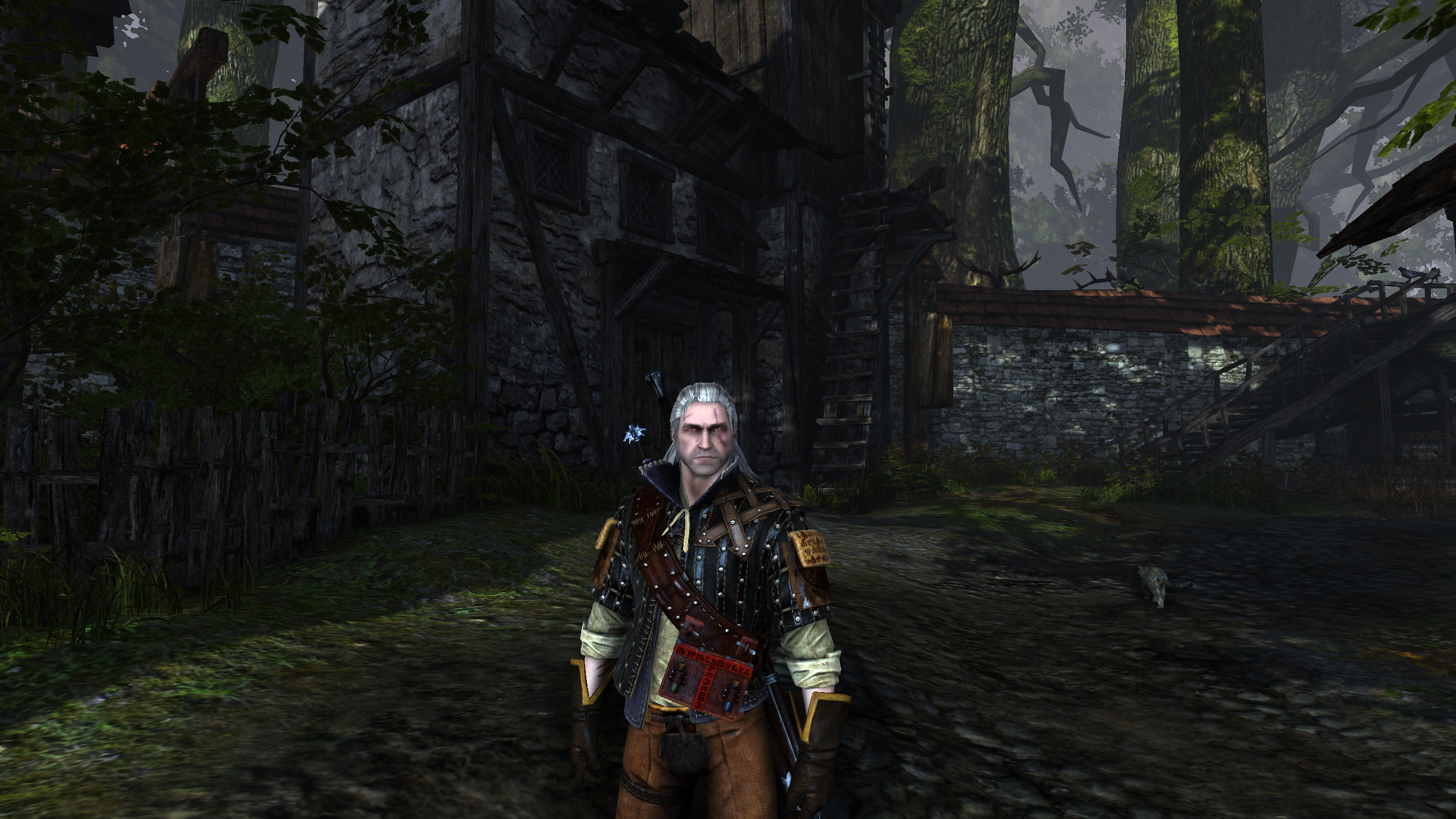 witcher2_2014_02_10_17_44_50_723.png
