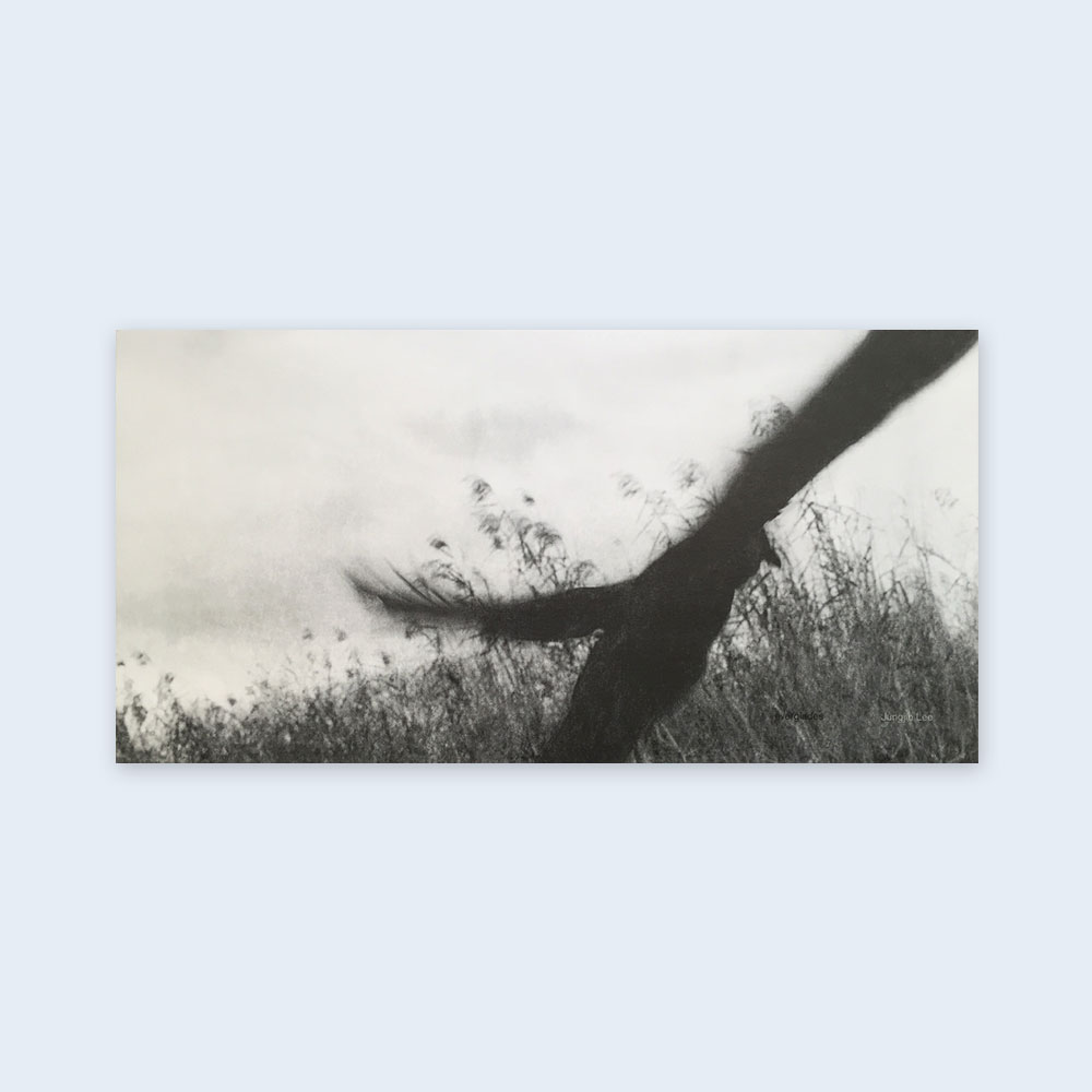 JUNGJIN LEE | Everglades $75.00