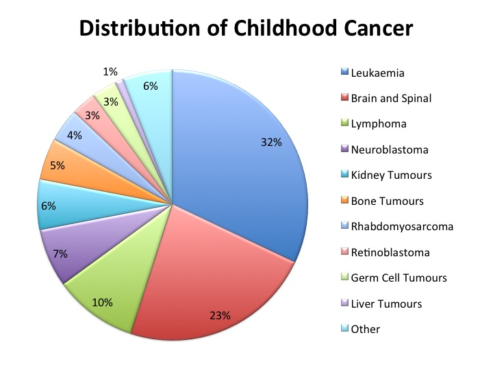 Fig. 1  This gives a very clear visual summary of the incidence of Brain and Spinal Tumours in comparison to other childhood cancers.