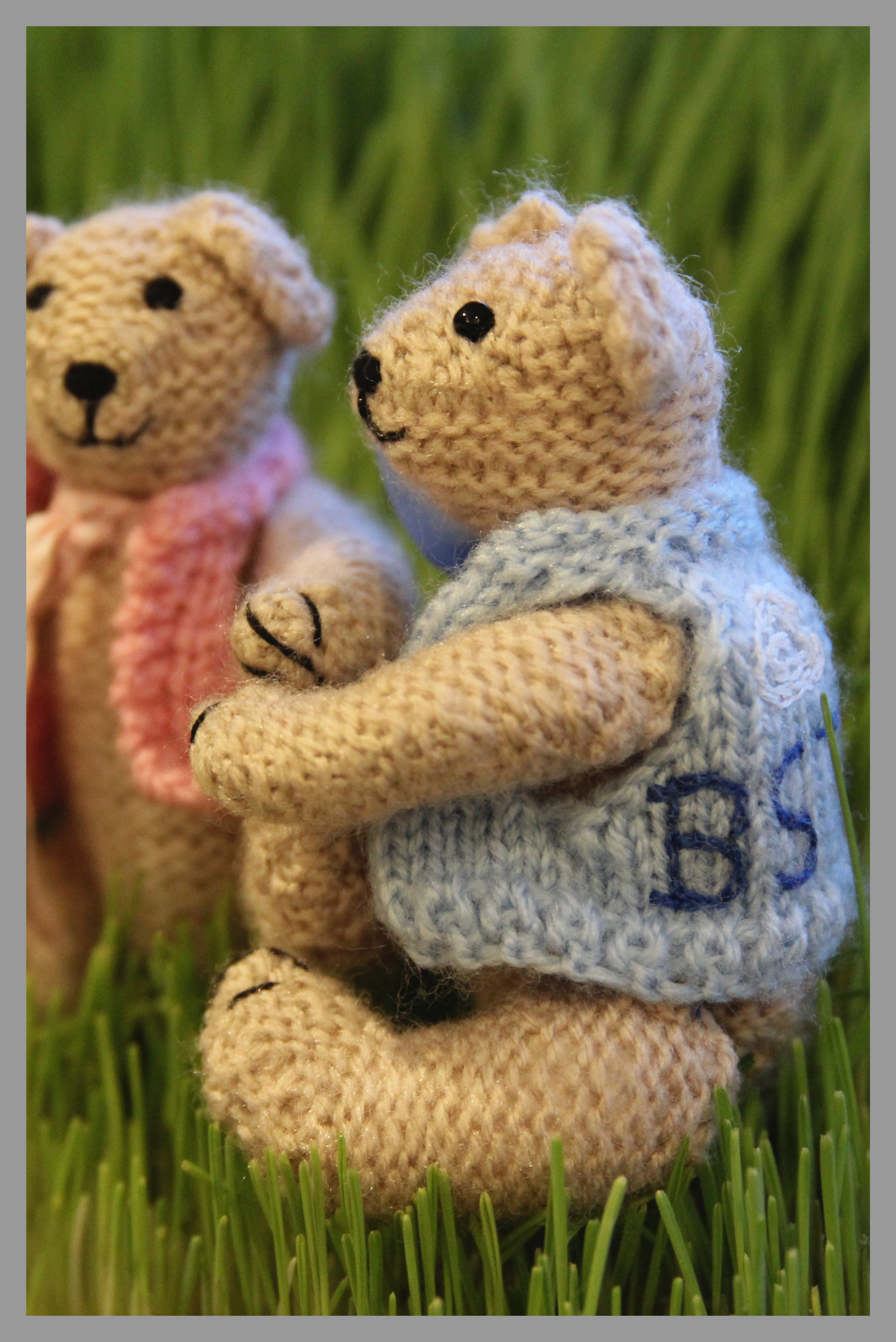 Personalised Knitted Bears  Get your very own personalised bear. They make lovely gifts for everyone from newborns to shabby chic lovers. To order yours, contact Sarah Backhouse directly on:  sarahbackhouse269@btinternet.com  or by phoning on 01243 511314 or 0781 369 6745.