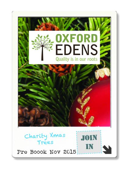 Charity Christmas Tree.jpg