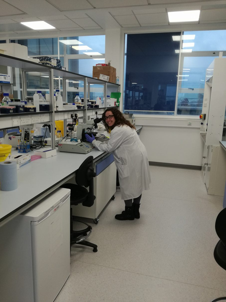Gemma Llargués Sistac working at Northern Institute for Cancer Research