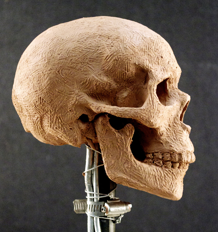 lack,e.Skull2-3.jpg