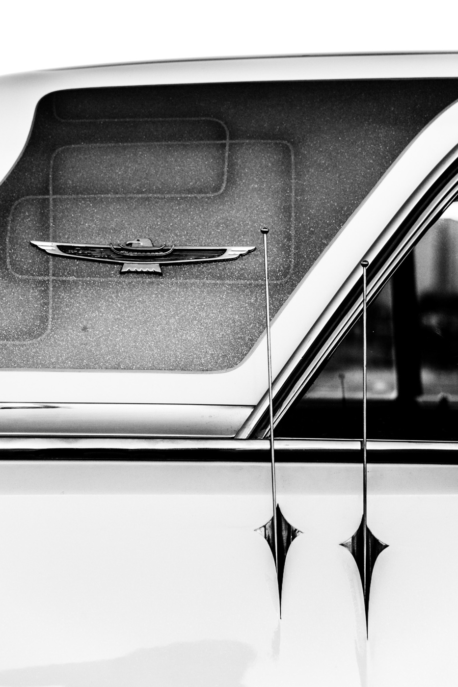 Copyright Tim Collins Photography-7488.jpg