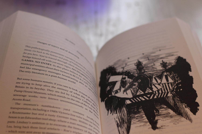 Marshland (Illustrations by Ada Jusic)