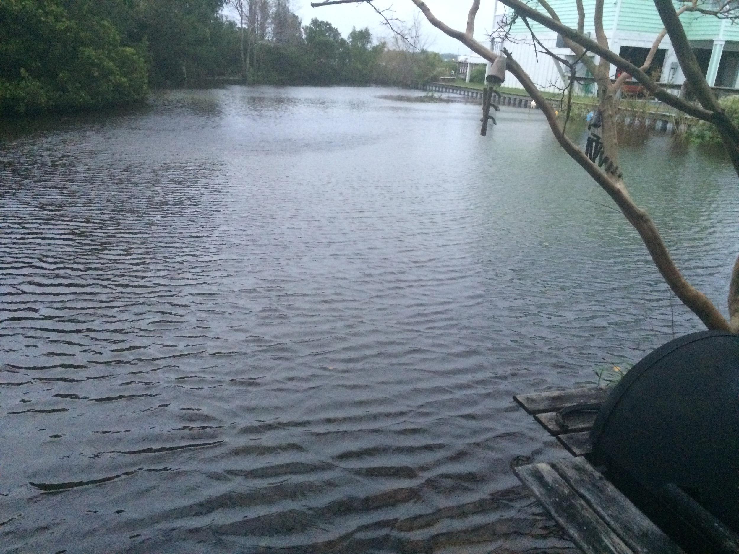 """My """"yard"""" flooded."""