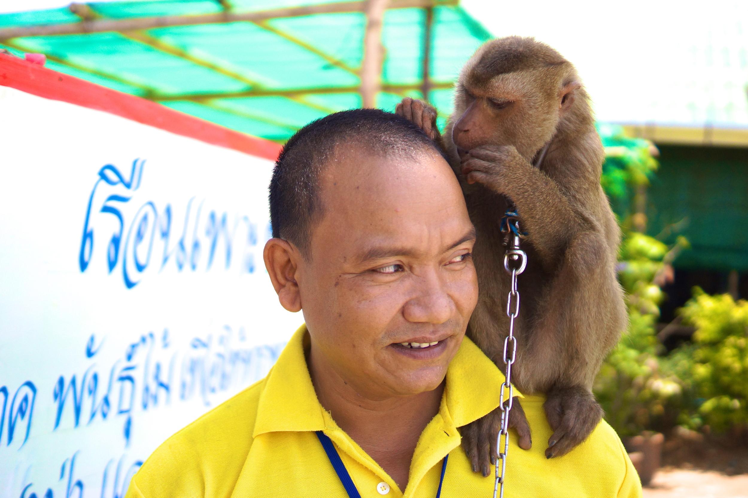 8 monkey man.JPG