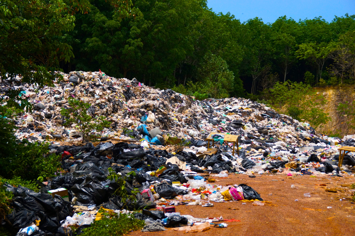 A very quick tour of the local dump