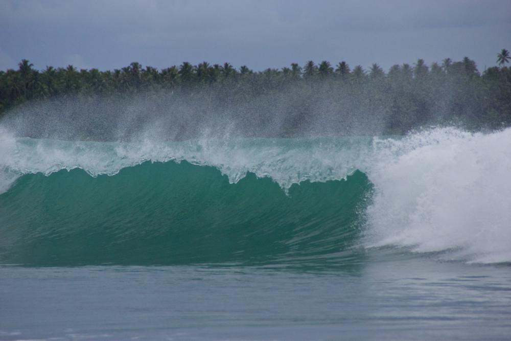 1 first wave.jpg