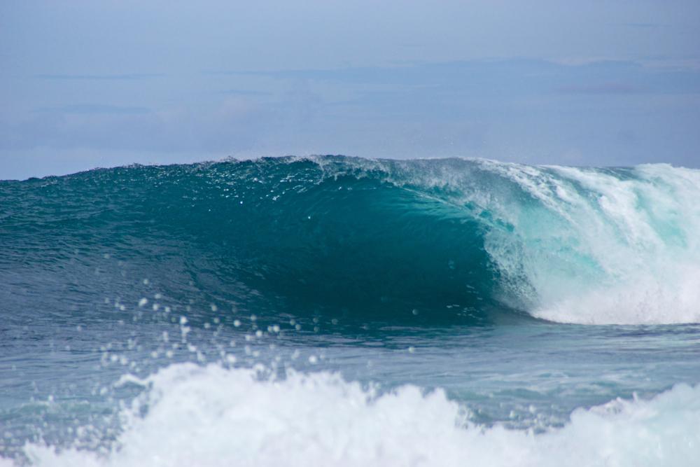 44 wave 2.jpg