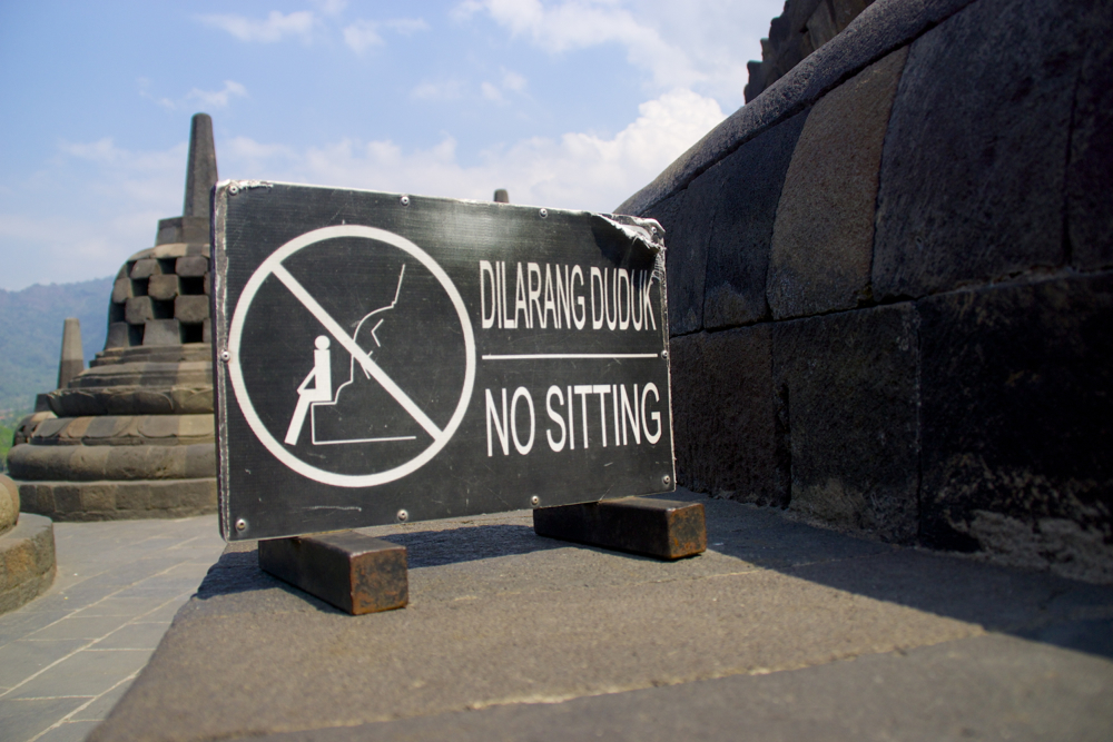 8 no sitting.jpg