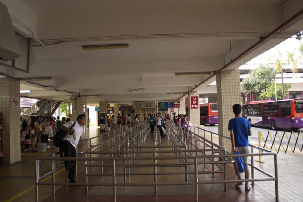 24 bus line.jpg