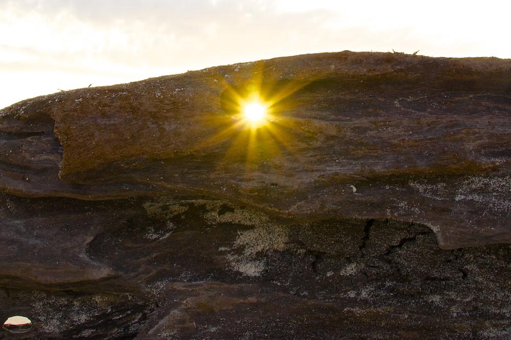 8 sun 1.jpg