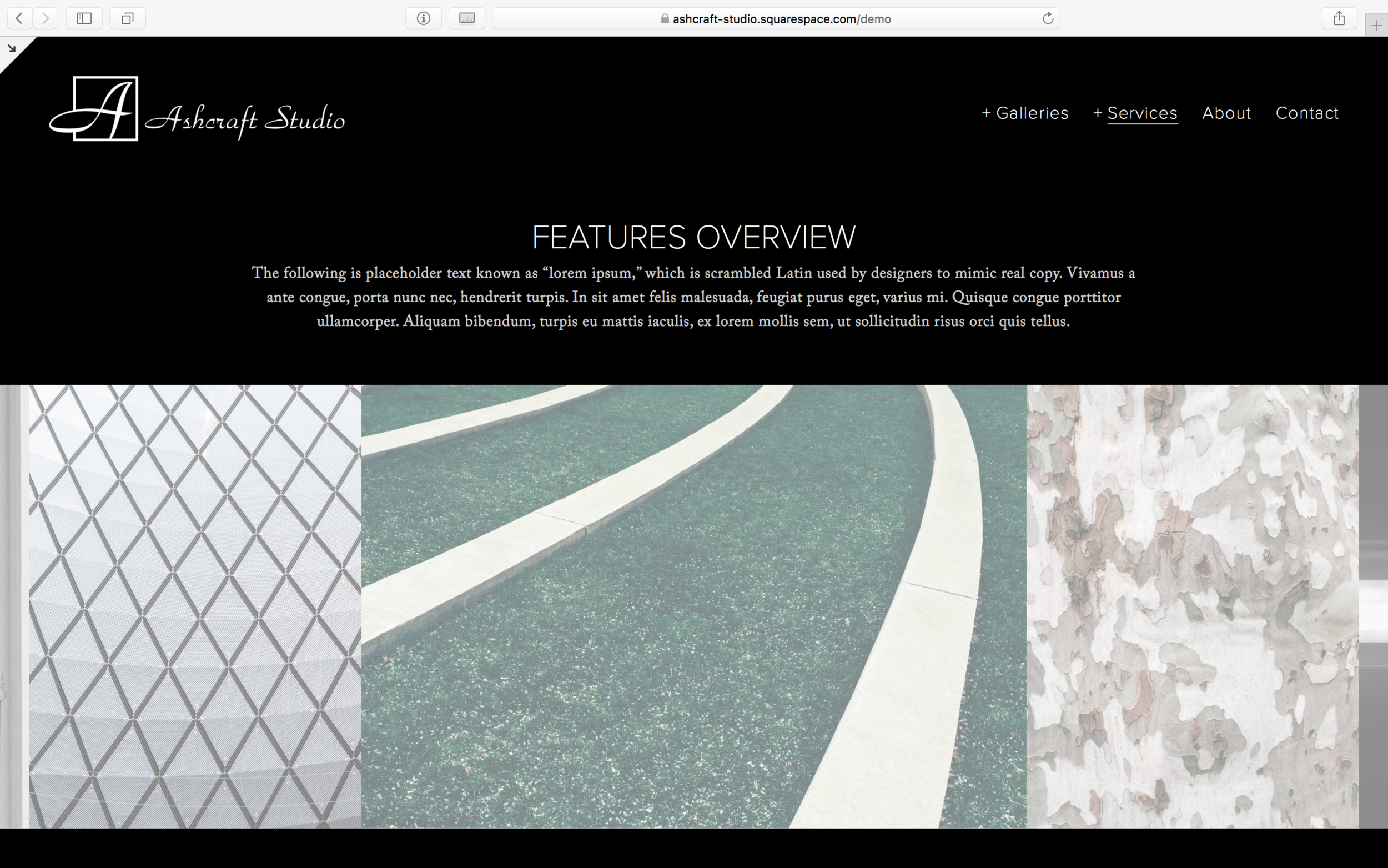 After: a custom CSS full-width gallery block on a page in Forte.