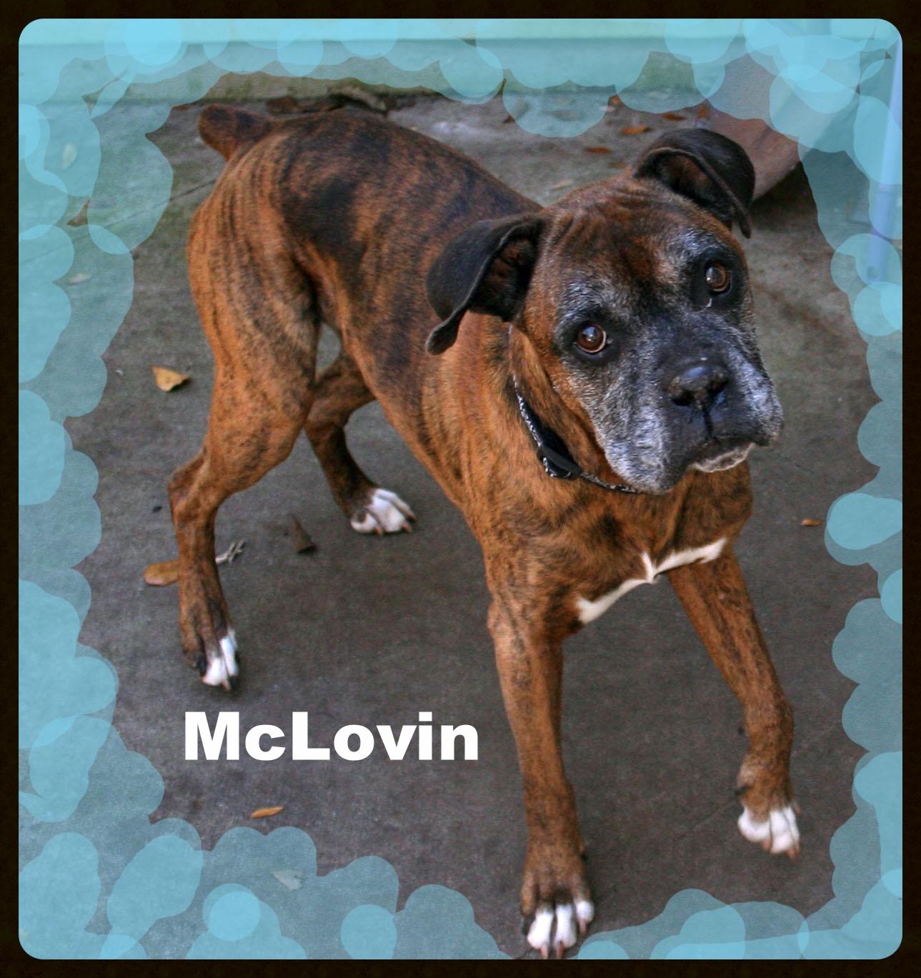 mclovin_edited-1.jpg