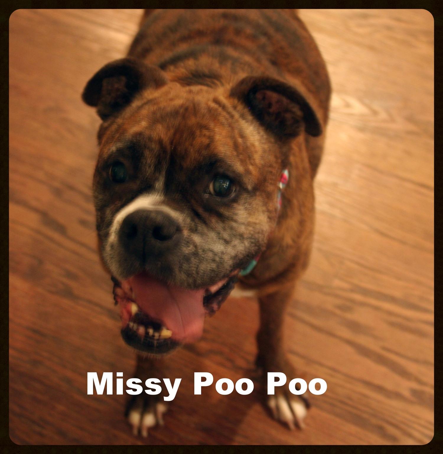 missy senior 3.jpg