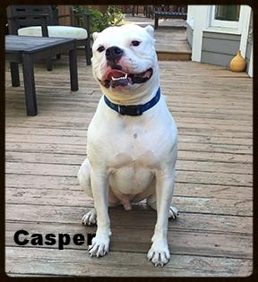 casper new 3.jpg