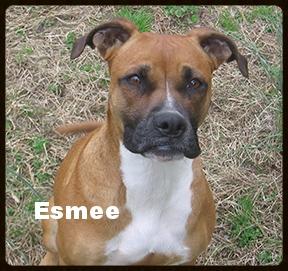 Esmee4.jpg