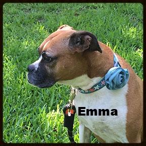 emma new b2.jpg