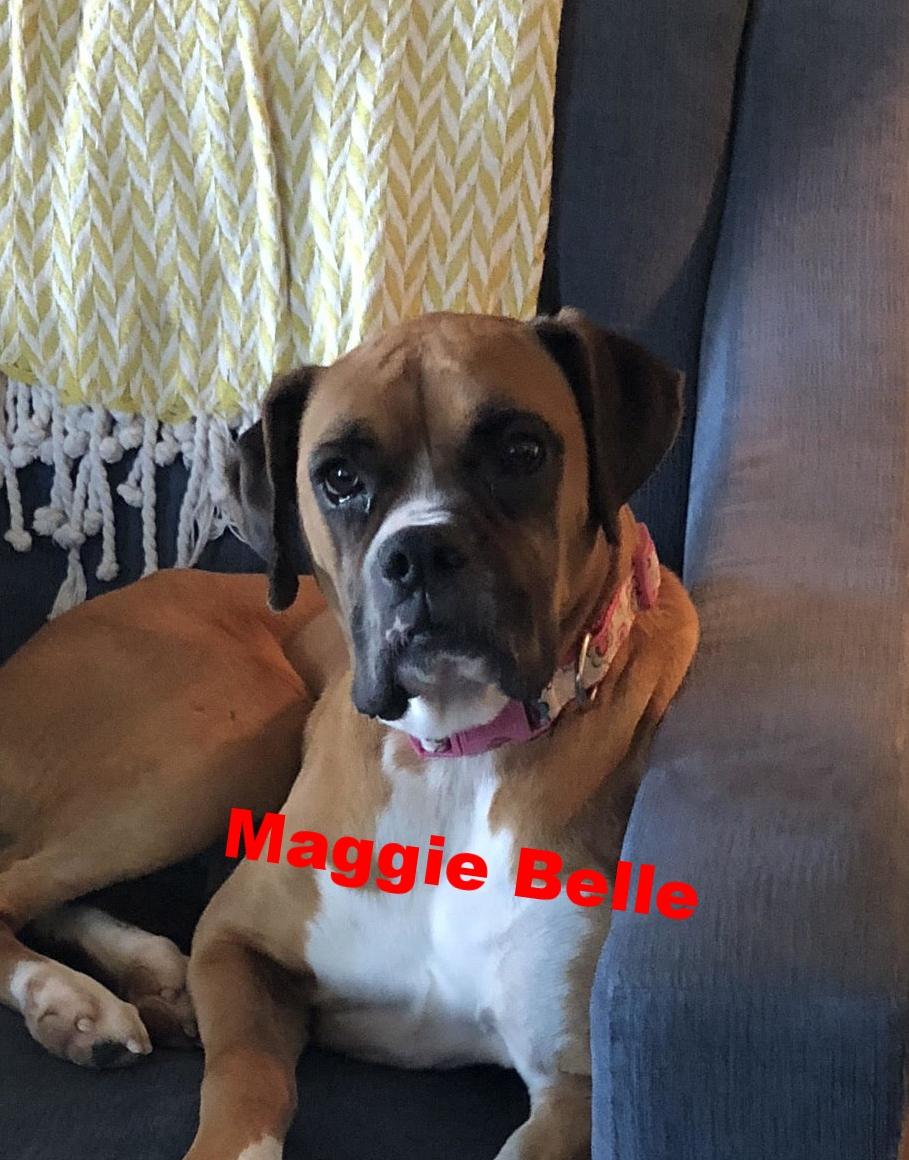 MaggieBelleHT.jpg