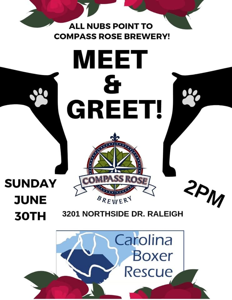 Compass Rose Meet & Greet in Raleigh, NC — Carolina Boxer Rescue