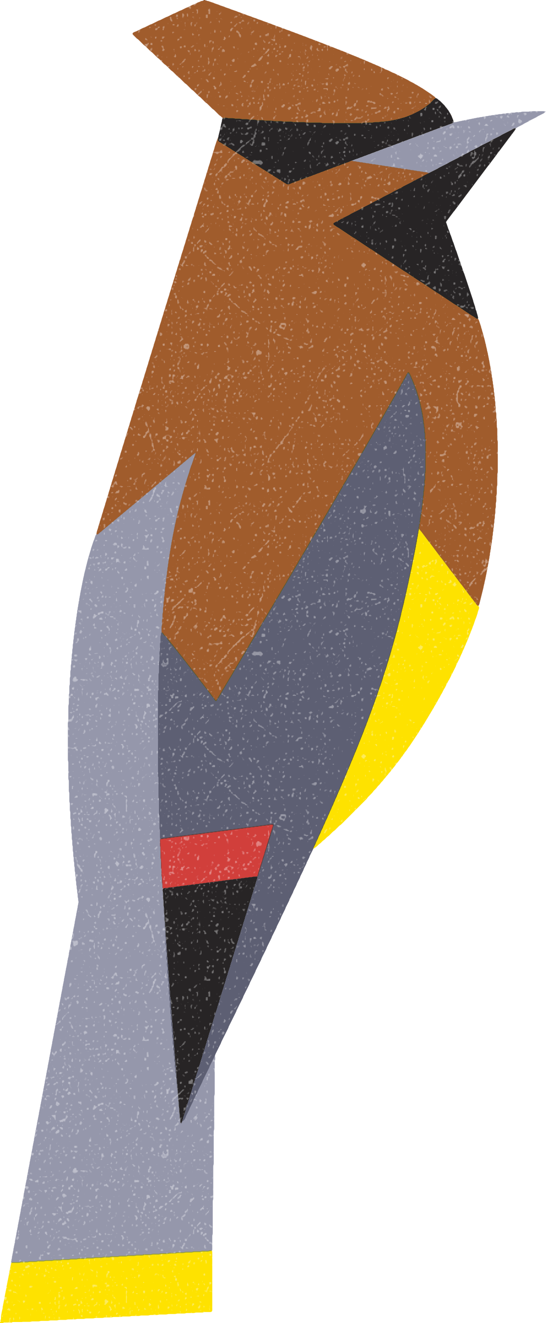waxwing.png