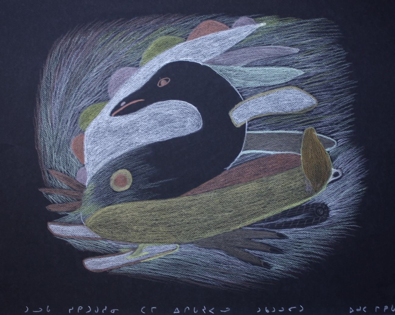 Bird and Fish Transformation<Br>20 x 25.5<Br>Coloured Pencil on Paper<Br>$ 650