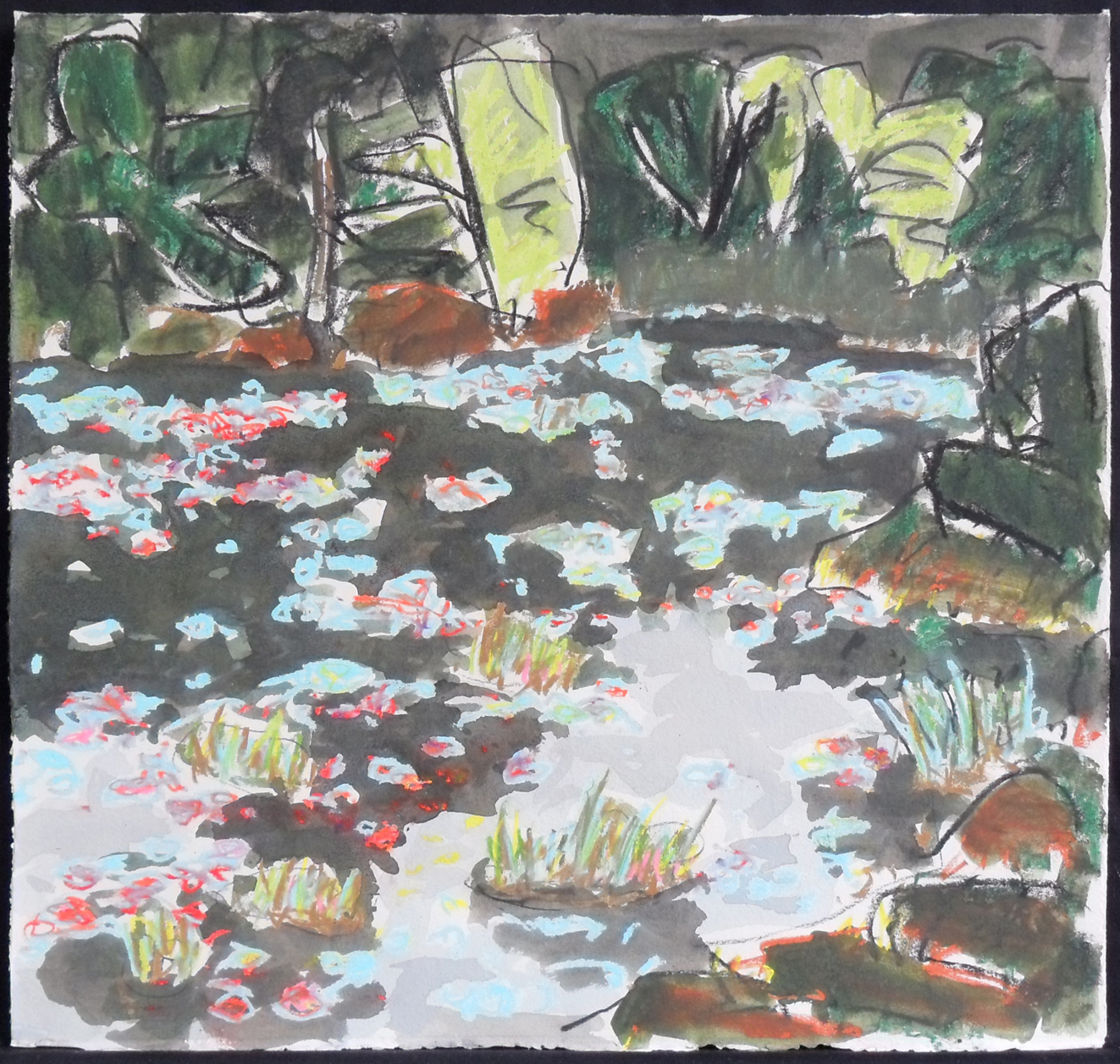 Lily Pads in the Beaver Pond<br>16 x 17<br>Ink, Pastel and Watercolour on Paper<br>$ 1100