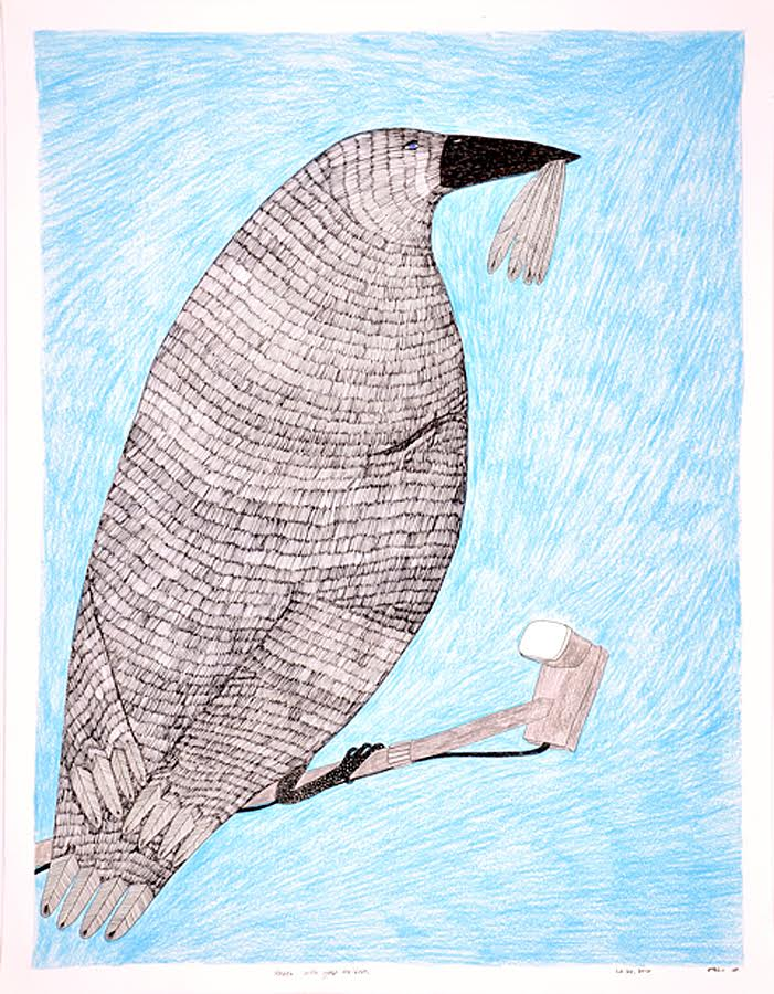 Raven with Goose Feathers<br>30 x 23<br>Graphite, Coloured Pencil and Ink<br> $ 1950