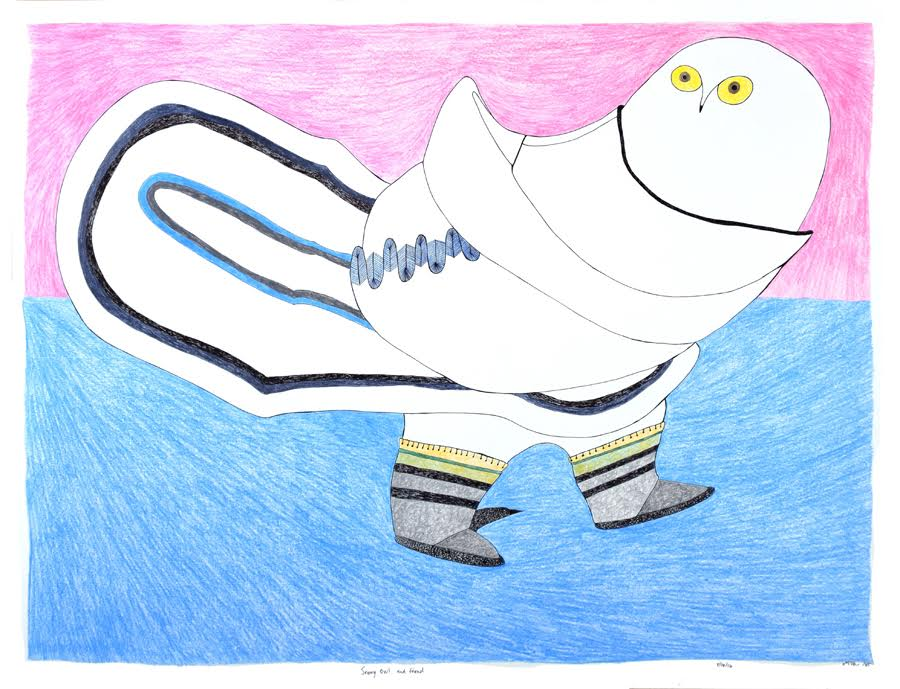 Owl and Friend<br>23 x 30<br>Graphite, Coloured Pencil and Ink<br> $ 1950