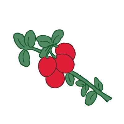 cranberries_wbg.png