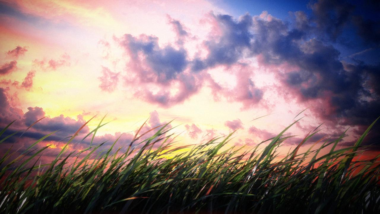 grass_test2.jpg