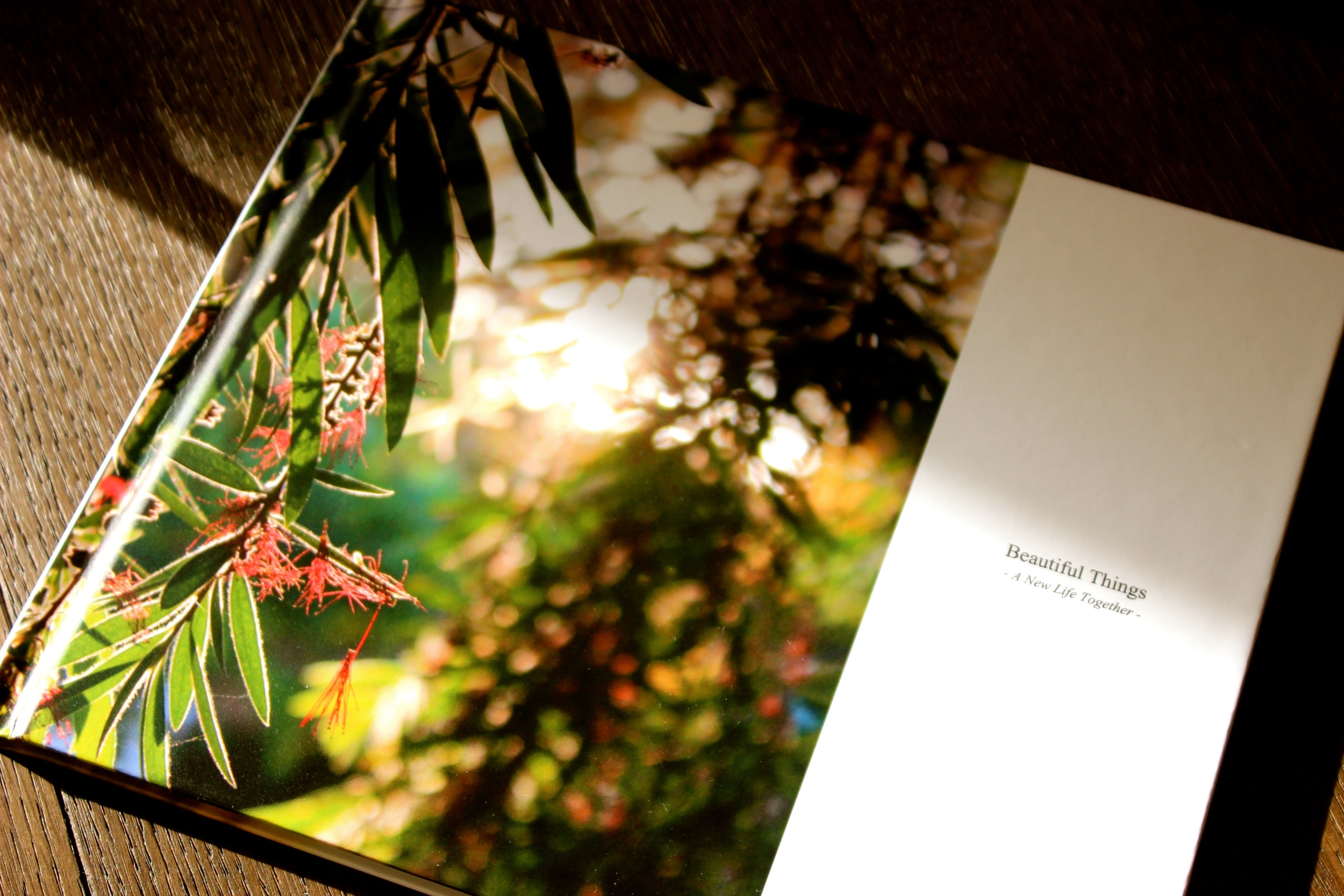 My second book; Beautiful Things ~ A New Life Together ~