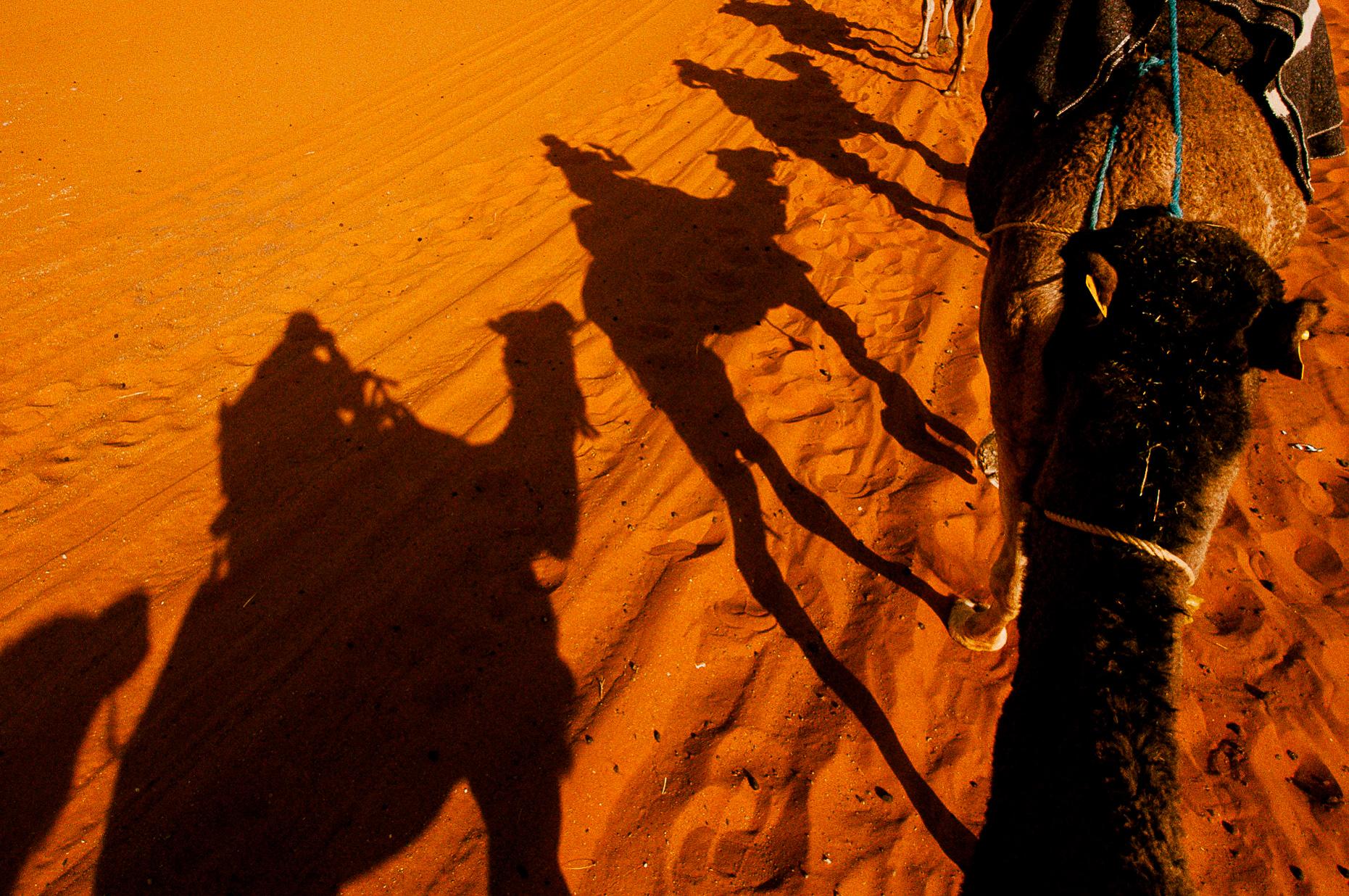 A 1 hour camel trek to camp.