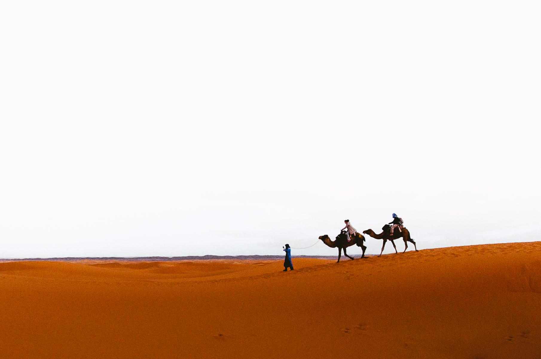 Camel trekking through the dunes.