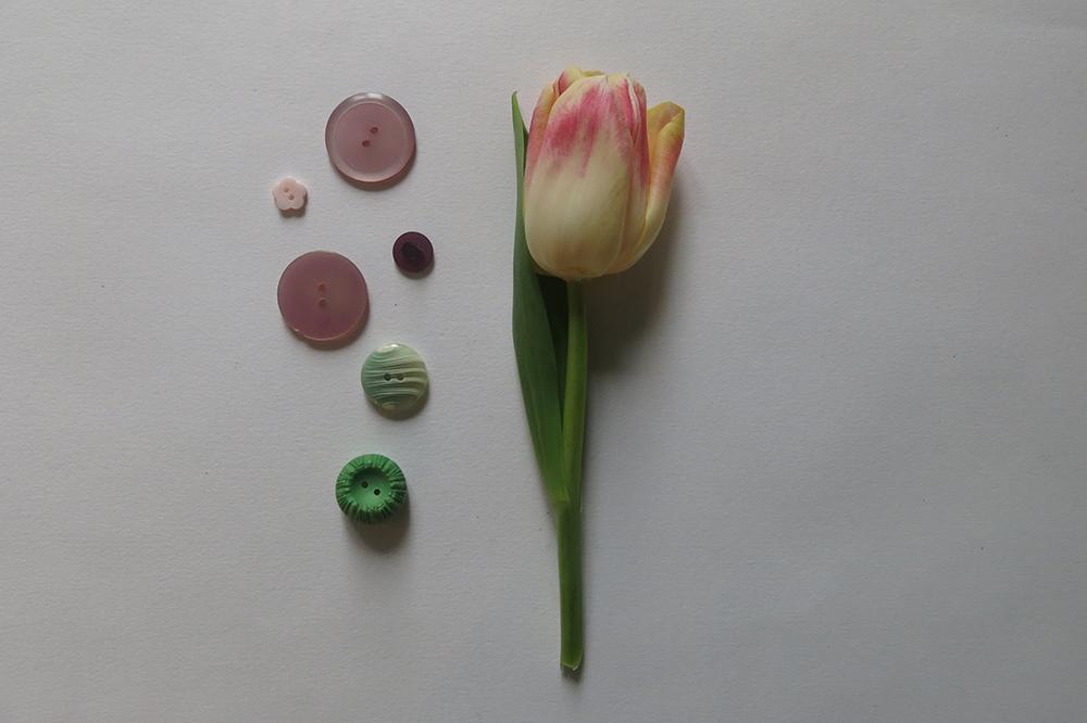 tulipLOW.jpg