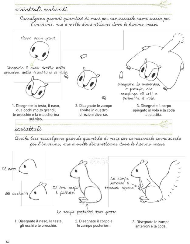Illustration-school---animaletti-550-800x800.jpg