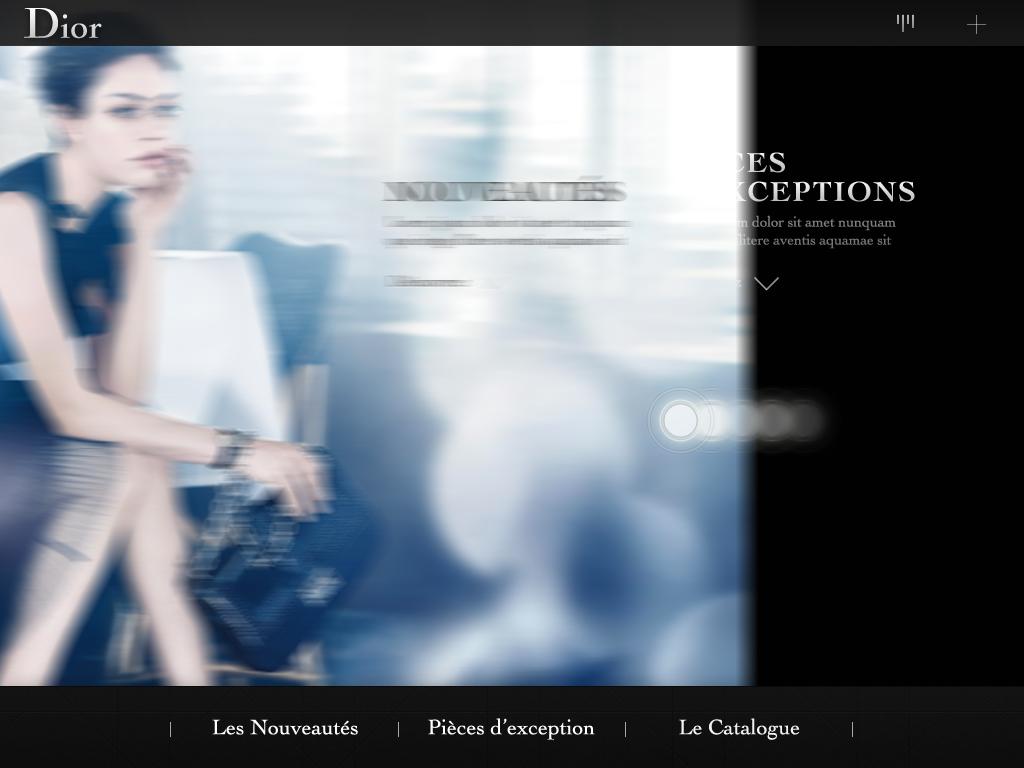 05-Dior_iPadPOS_CoverScreen_03.jpg