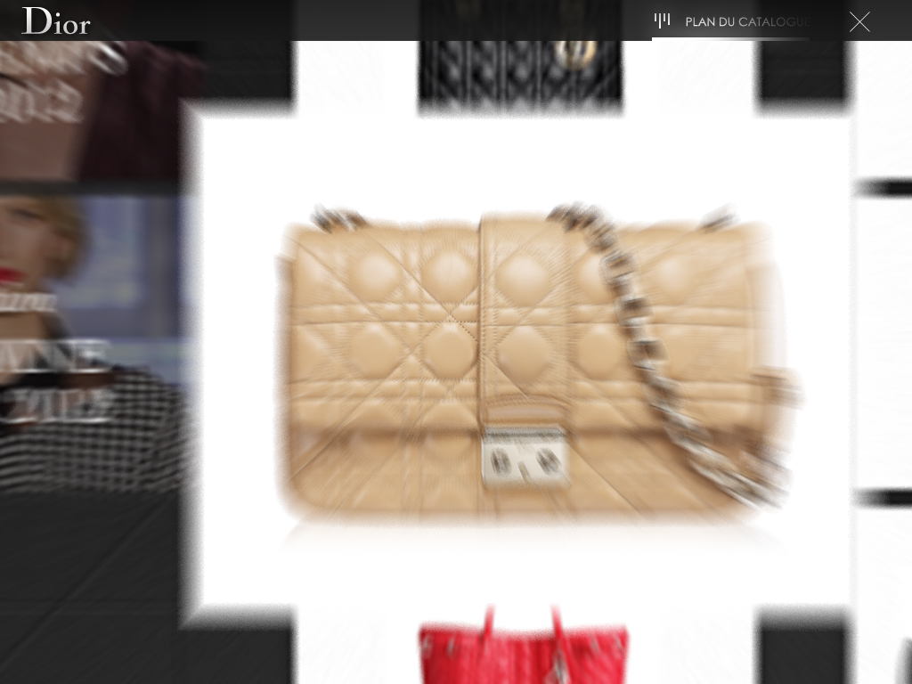 35-Dior_iPadPOS_CoverScreen_01.jpg