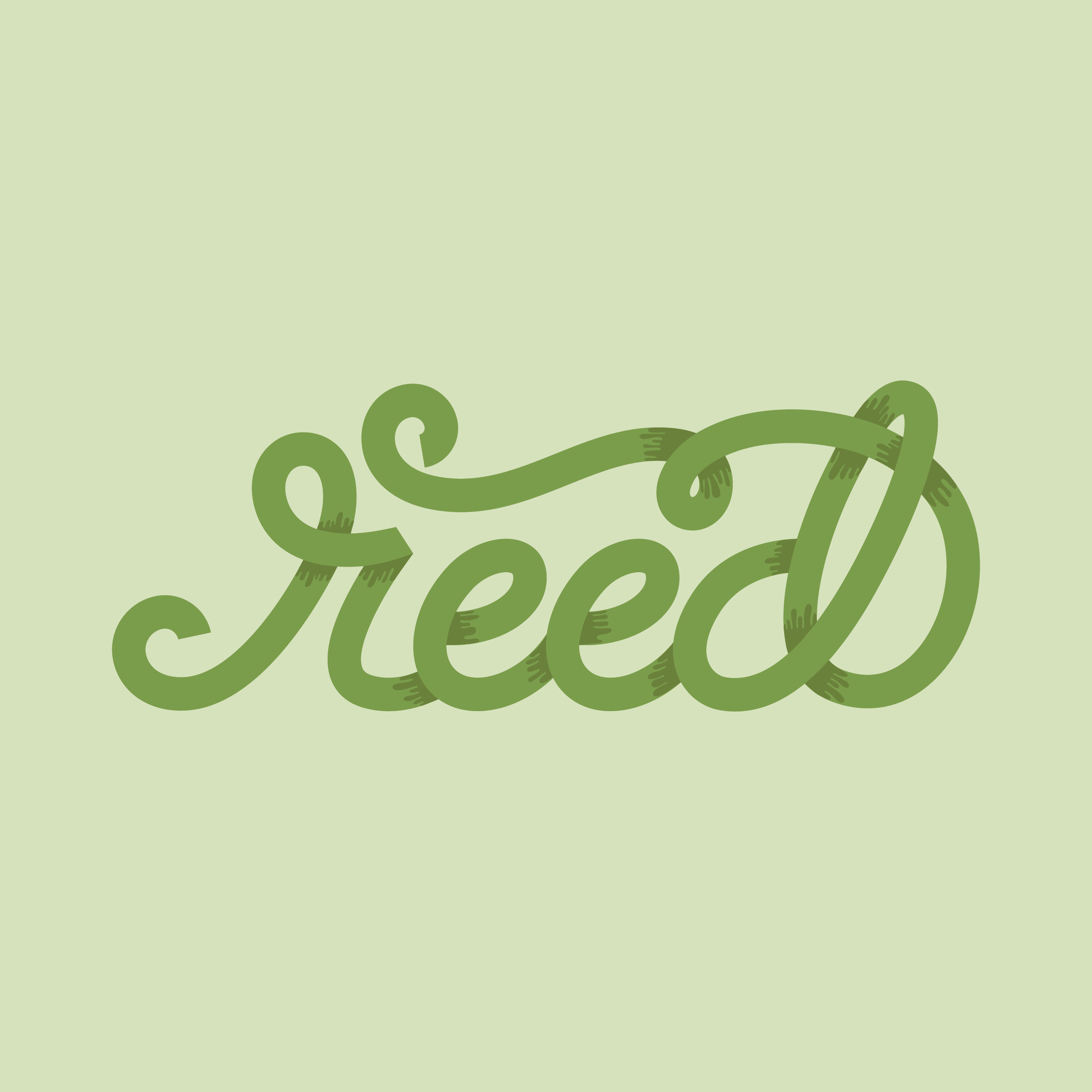 Reed-01.jpg