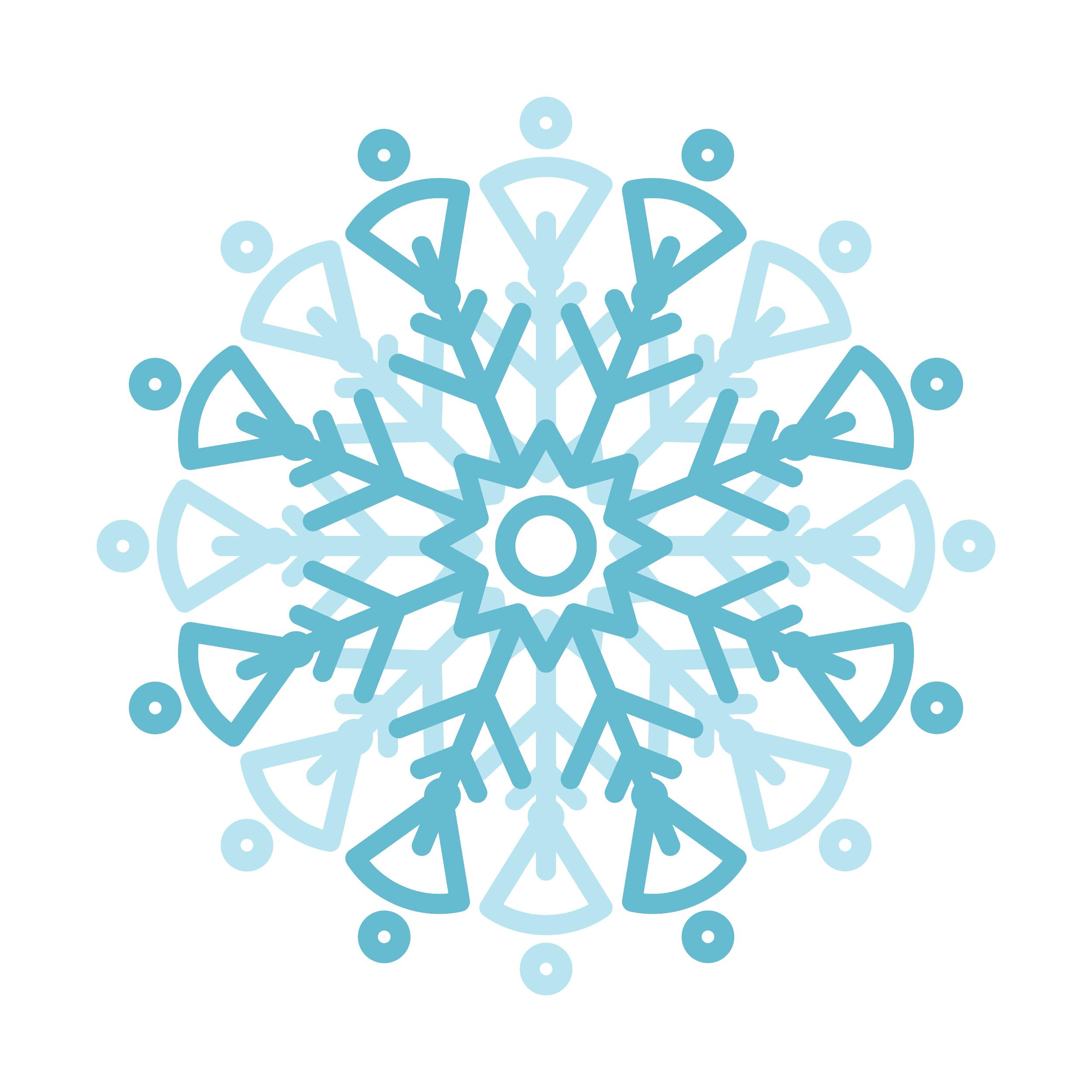 Snowflakeblog-01.jpg