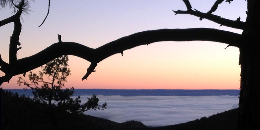 dusk over the fog - (c) mark somple 2014