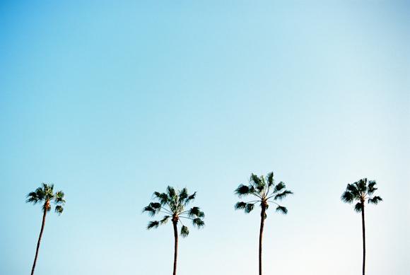 Becky Rui Los Angeles Melrose Venice-009.jpg
