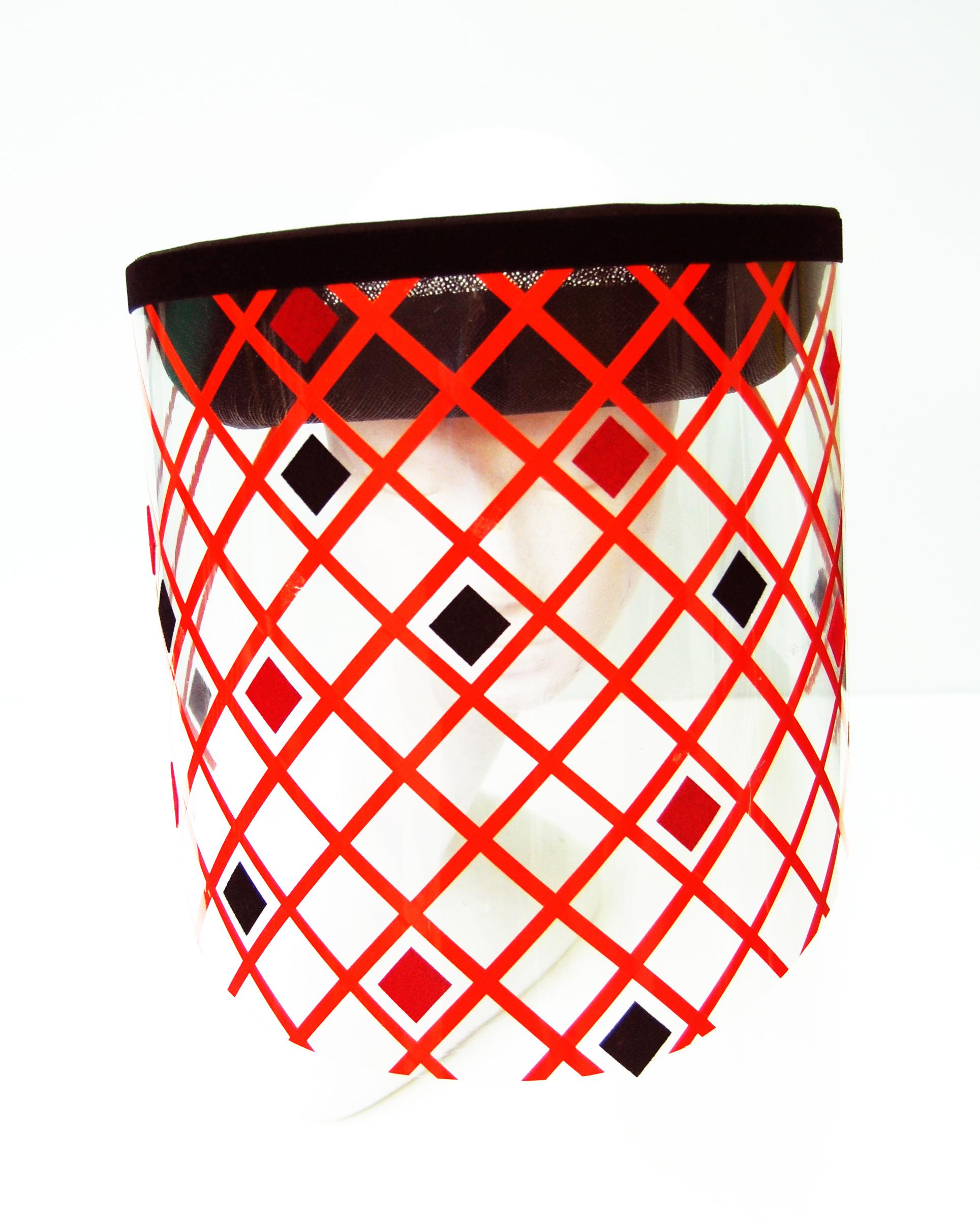 Beehive Netting front.jpg