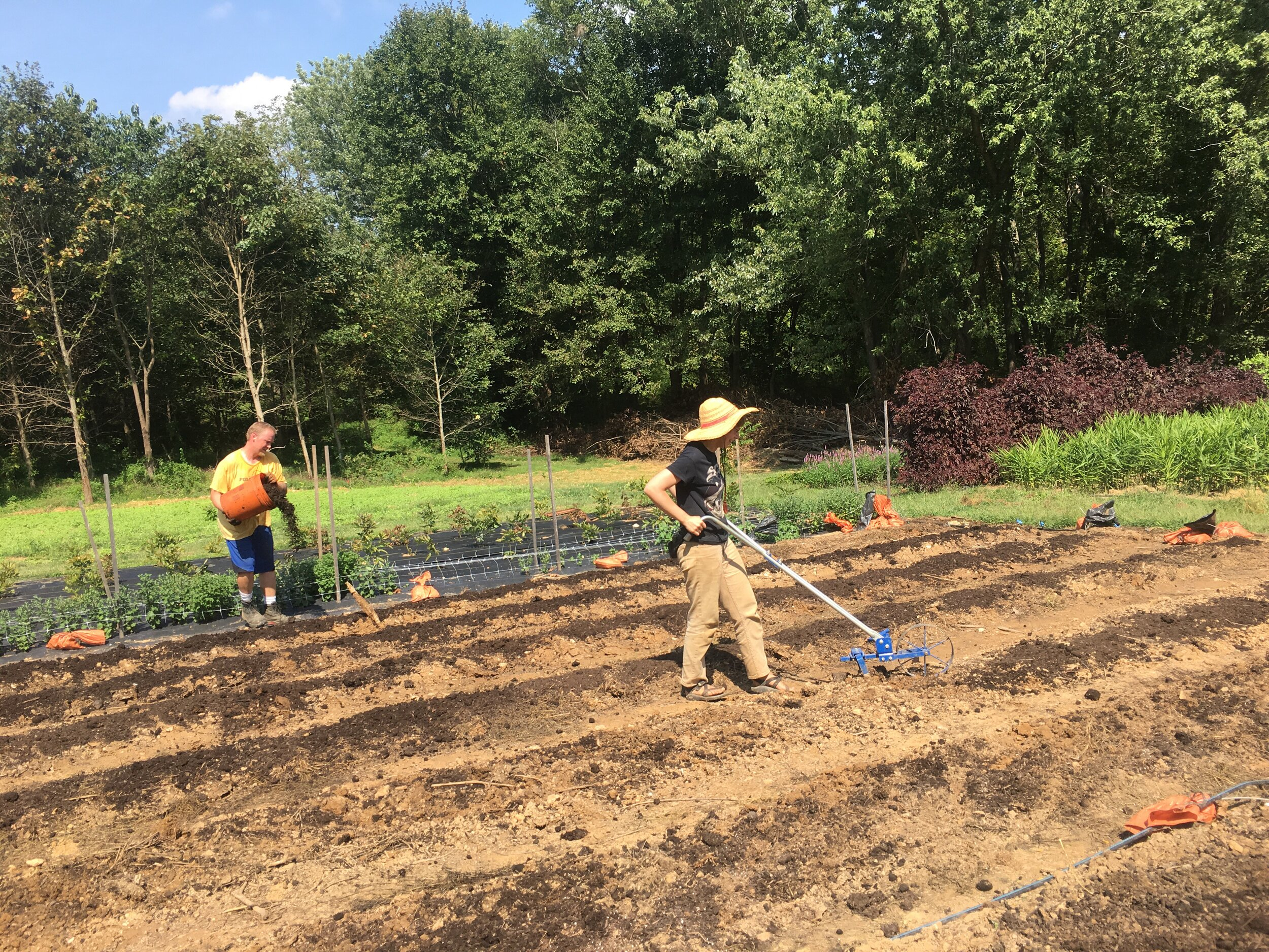 Amelia P. and Dave, prepping beds last week for our overwintered flowers.